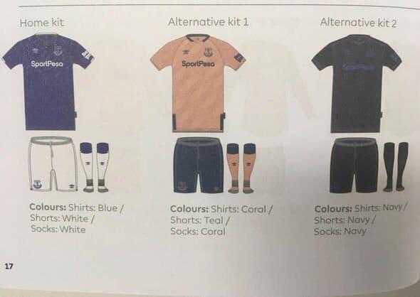 brand new daca6 eb95c Umbro 2019-20 Everton Third Kit Leaked | The Kitman